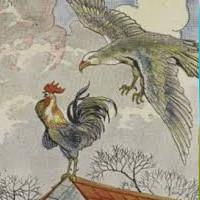 cuento de los dos gallo y el aguila