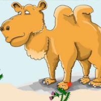 cuento de la envidia del camello
