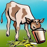 cuento de la becerra y el toro con moraleja