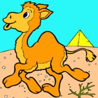 cuento del miedo al camello