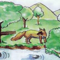 cuento zorro en el rio