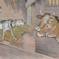 Fabula del perro del hortelano y el buey