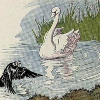 Fabuala del cuervo y el cisne
